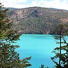 Kalamalka Lake by Gregory Ewanowich