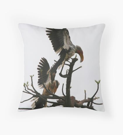 Hornbill Courtship Throw Pillow
