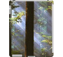 Shining Through the Giants iPad Case/Skin