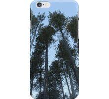 Cypress Hills  iPhone Case/Skin