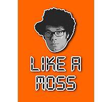 Like a Moss Photographic Print