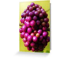 Florida Native Berry Bush Greeting Card