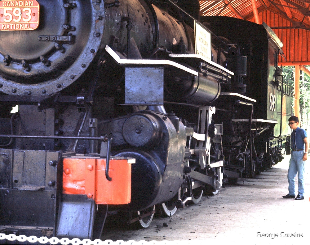 Age of Steam by George Cousins