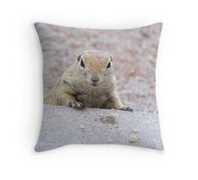 """Please feed me"" Ground squirrel  Throw Pillow"