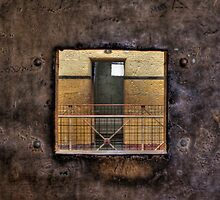 Through The Cell Door by Scott Sheehan