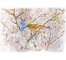 Spring Jewel Poster
