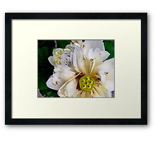Perfection is overrated Framed Print