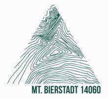 Mount Bierstadt Topo by januarybegan