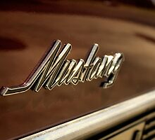 Mustang  by Intheraine