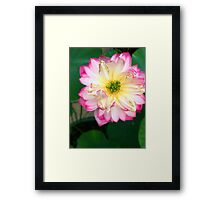 Perfection is Overrated The Second Framed Print