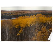 Fall in Waskesiu Poster