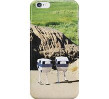 Drone Pair iPhone Case/Skin
