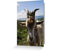 Billy theGoat Greeting Card