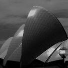 Sydney Opera House Study in Black & White (pt1) by Janie. D