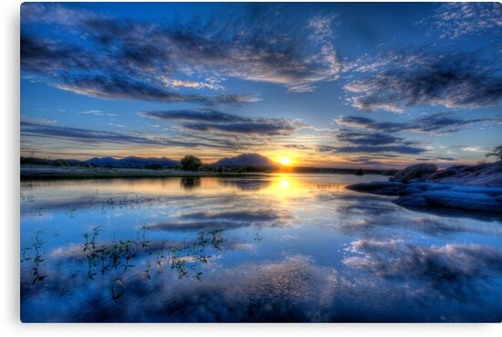Willow lake Blue by Bob Larson