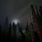 Light in the sky by skreklow