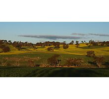 Across The Fields Just Before Sunset. Photographic Print
