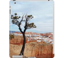 Living on the Edge iPad Case/Skin