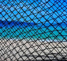 Through the net by Denis Molodkin