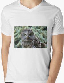 Grey Owl  Mens V-Neck T-Shirt