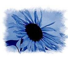 Blue Photographic Print