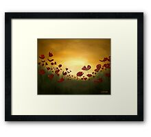 Poppies in the Rising Sun Framed Print