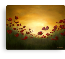 Poppies in the Rising Sun Canvas Print