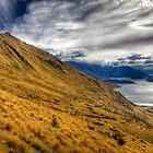 Golden Otago - New Zealand by Kimball Chen