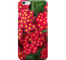 red flower iPhone Case/Skin