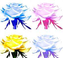 Roses like Warhol by Steve plowman