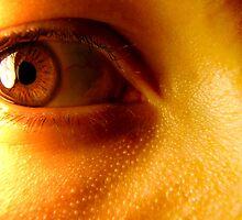 Macro Eye by sampsd