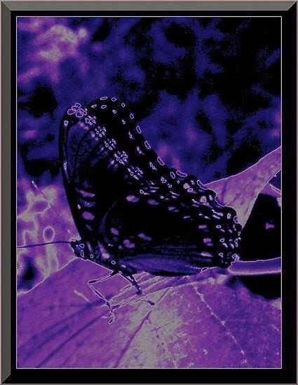 Dream Butterfly by PoeticHeartArt