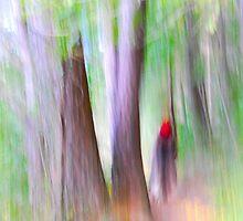 Not little red ridding hood by photojam