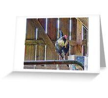 Cock Walk Greeting Card