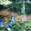 ADIRONDACK MOUNTAIN RIVERS AND CREEKS II by linmarie