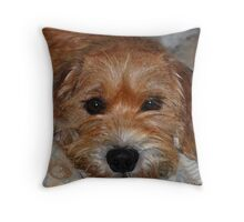 Benji  Throw Pillow