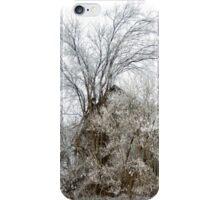 A l'abandon iPhone Case/Skin