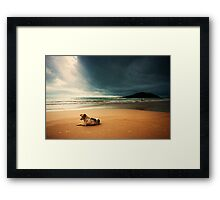 Dog day afternoon Framed Print