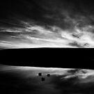 An explosion of light by Saverio Savio