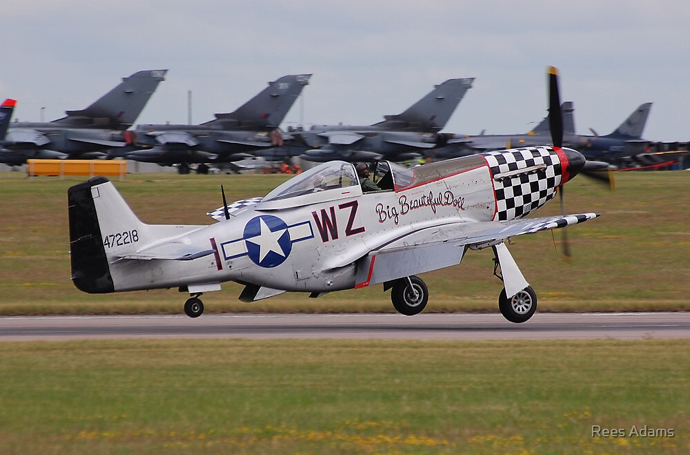 Big Beautiful Doll P-51D Mustang by Rees Adams