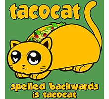 Funny - Tacocat Spelled Backwards  Photographic Print