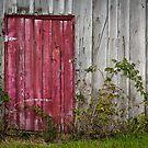 The Red Door by Jacinthe Brault