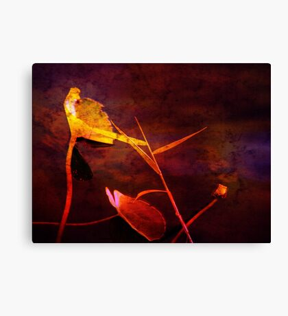 Red as Blood Canvas Print