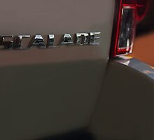 Cadillac Escalade (Back) by FoodMaster