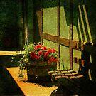Sunny Corner by Susanne Van Hulst