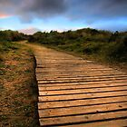 Beach walkway by John Ellis