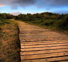 Beach walkway by John Ellis