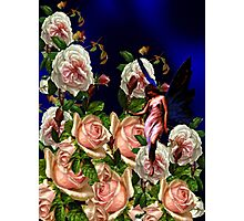 The Rose Garden Photographic Print