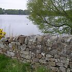 The Tranquility of Talkin' Tarn, Cumbria by Peter Telford