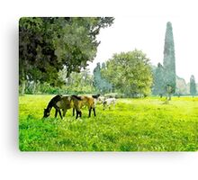 Grazing horses and cows Canvas Print